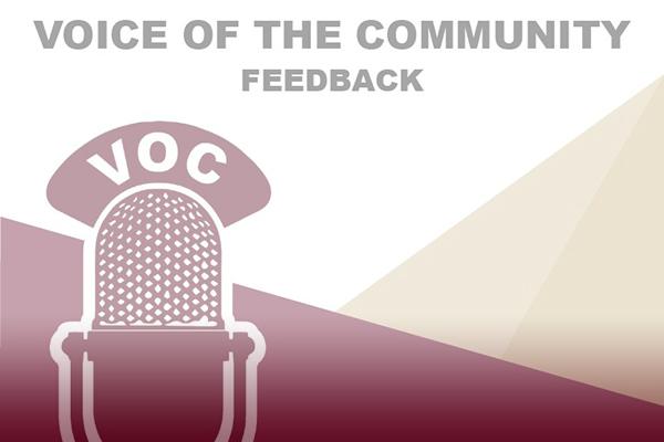 Voices full report