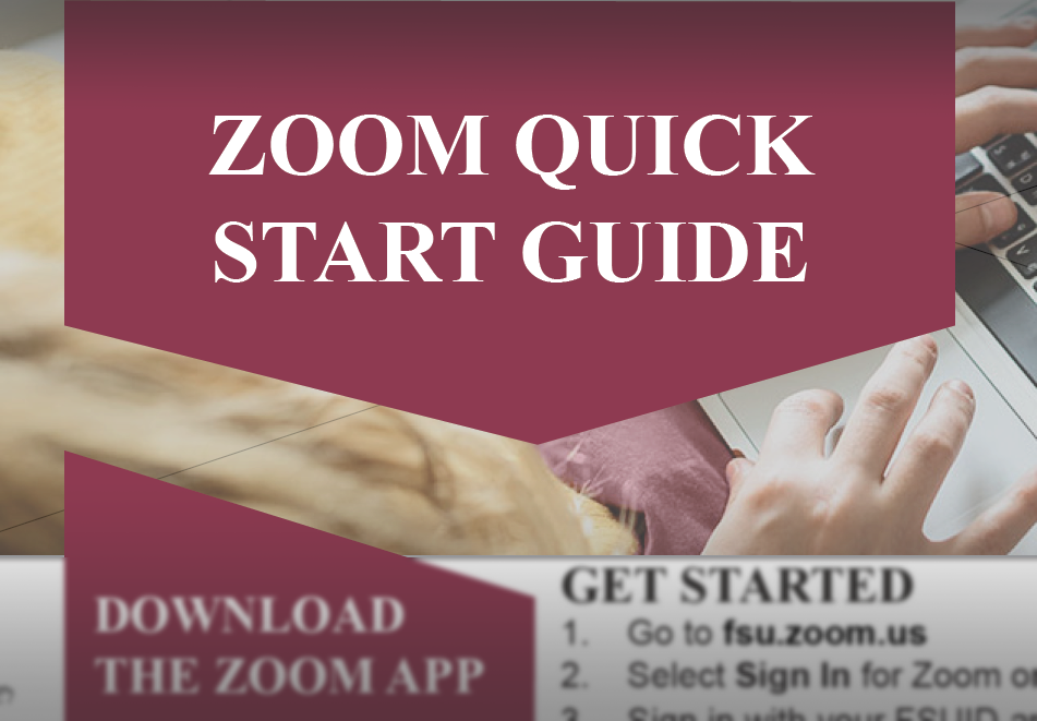 Zoom Quick start guide