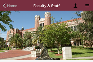 Faculty Staff Screenshot_mini2.png